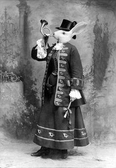 felicia the hornblower - john williams