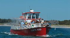 Cap'n Kids Ice Cream Cruises include Cape Cod Creamery Ice Cream! Cruise Bass River while you enjoy the locally made ice cream. There are also water canons on board! Super fun with kids.
