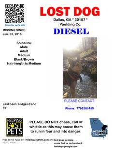 Lost Dog - Shiba Inu - Dallas, GA, United States