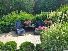 piha,terassi,terassikalusteet,koristelu,kukat,kasvit,puutarha,viherpiha,kuukauden piha,ulkokalusteet