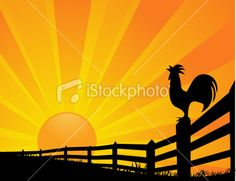 """""""A vector illustration of a rooster crowing at sunrise. Sunrise Images, Art Template, Templates, Bird Stencil, Sunrise Painting, Black Rooster, Sun Logo, Free Vector Art, Crow"""