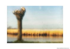 Serie landschap