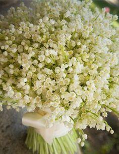 Imagen 48 El bouquet de Flores Blancas. Conoce los diferentes tipos de Ramos y…