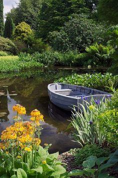 A Pond Garden | Hostas, Iris