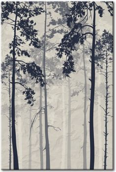 Cuadro decorativo Forest In Fog