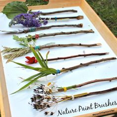 Messy Little Monster: How to make nature paintbrushes