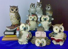 They are very cute owls....