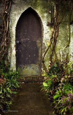 My inner landscape Porches, Portal, Shutter Doors, Unique Doors, Garden Gates, Doorway, Windows And Doors, Paths, Entrance