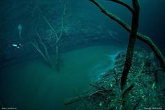 A Murky Underwater River