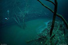 A Murky Underwater River