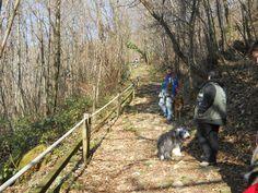 Inizia la salita al Castello di Zucco lungo un antico sentiero lastricato.