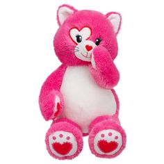 This is what I want for Valentine's Day.  Watching Susan get a bear for her birthday put the fever in me to try Build a Bear out = so Dad is taking me for V-day!