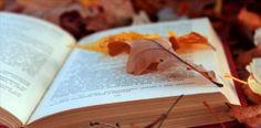 Un otoño de libros II