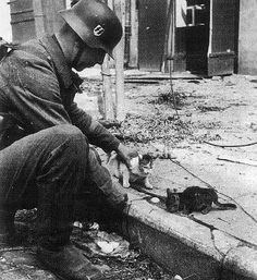 German SS soldier with  2 kittens WWll