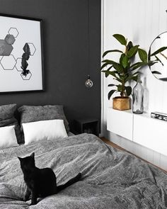 Black and white minimalist bedroom with plant Minimalist Bedroom Bedroom Black interiordesign Minimalist plant White White Bedroom Decor, Studio Apartment Organization, Interior Trend, Home Decor Bedroom, Bedroom Plants, Minimalist Bedroom, Modern Bedroom, Black Walls, Interior Design Bedroom