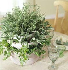 Herb centerpieces - affordable and easy decor. Bonus: let guests season their dinner or take home the centerpieces after your wedding. Herb Centerpieces, Dining Centerpiece, Wedding Centerpieces, Centerpiece Ideas, Diy Herb Garden, Garden Pots, Garden Club, Garden Ideas, Herb Wedding