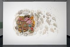 artist courtney mattison sculpts large-scale ceramic installations in celebration of the exotic beauty of coral reefs and emphasizing the threats they face.