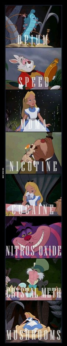 alice in wonderland drugs reddit