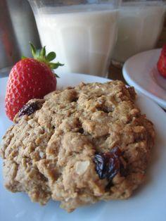 healthy snacks for kids: breakfast cookies