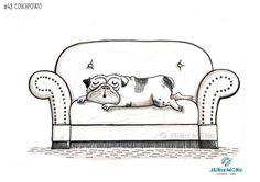 48-2017-couchpotato