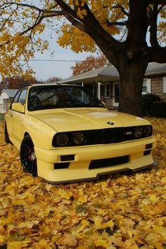 BMW E30 M3 yellow fall