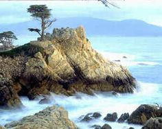 Monterey, California 17 mile drive   Can't wait to cross this off of my bucket list in a couple of weeks.