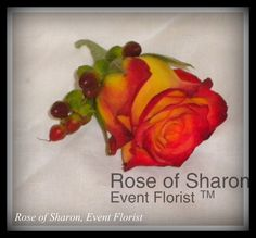Boutonniere: Red and Orange Rose with Red Hypernicum Berries (Rose of Sharon)