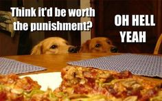 They all love pizza. Lol