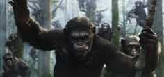 "Andy Serkis as Caesar in 20th Century Fox's ""Dawn of the Planet of the Apes"""