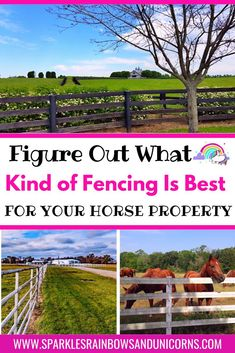 Get all the details on horse fencing for your horses. How high the   fencing should be. Different types of horse fencing. Costs per foot.   Maintenance of fencing and more. This post is meant to help you get the   best fencing for your money and save you time trying to figure out the   details by laying out what you need to know. #horsefencing   #horsefencingideas #horsefencingcheap #equestrianfencing   #sparklesrainbowsandunicorns Mesh Fencing, Horse Fencing, Types Of Fences, Types Of Horses, Gate Handles, Buy A Horse, Horse Riding Tips, Horse Property, Horse Training