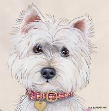 "Dogs Westie ""Cheeky Face"" Open Edition Print of Original Painting by Su Barratt"