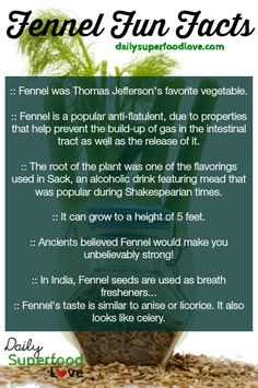 The valuable health benefits of fennel seeds are quite amazing due to the many nutrients packed in these tiny seeds… discover 10 benefits today.