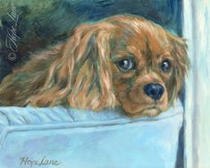 Original oil painting of a dog, vintage style Cavalier King Charles Spaniel portrait, dog art by Hope Lane, puppy eyes Cavalier King Charles, King Charles Spaniel, Roi Charles, Pet Portraits, Portrait Paintings, Puppy Eyes, Style Vintage, Dog Art, Pet Birds