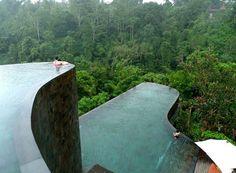Swimming pool amongst a jungle...