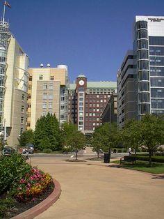 Case Western Reserve University, Cleveland, Oh.