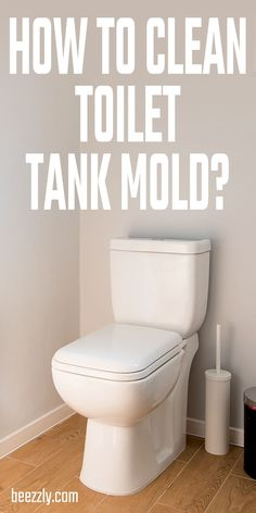 How to Clean Toilet Tank and How to clean Toilet Tank Mold, Good Advice about Vinegar in toilet tank, Best way to Clean Toilet Tanks Vinegar In Toilet Tank, Toilet Tank Cleaner, Bathroom Cleaning Hacks, Toilet Cleaning, Car Cleaning, Diy Cleaners, Household Cleaners, Cleaners Homemade, Cleaning Recipes