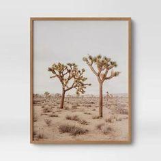 Hanging Frames, Frames On Wall, Framed Wall Art, Wall Art Decor, Framed Prints, Canvas Frame, Wall Canvas, Desert Background, Cactus Wall Art