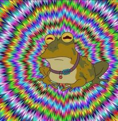 All hail the Hypnotoad!Hugs and Pins Bizarre Pictures, Best Funny Pictures, Funny Pix, Funny Images, Trippy, Futurama Bender, Frog Drawing, Comic, Funky Art