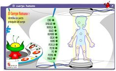 PIZARRA DIGITAL INTERACTIVA: EL CUERPO HUMANO Teaching Spanish, Spanish Class, Flipped Classroom, Dual Language, Learning Games, Cos, Human Body, Interactive Whiteboard, Body Parts