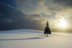 The Sun and Shadow,Hokkaido by Kent Shiraishi on 500px