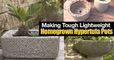 Hypertufa - create lightweight, sturdy, attractive stone pots, planters and ornaments for the garden and home using cement, peatmoss & perlite [LEARN MORE] Cement Garden, Concrete Pots, Concrete Planters, Garden Planters, Concrete Crafts, Concrete Projects, Planter Pots, Garden Yard Ideas, Big Garden