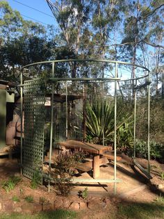 What became of our old trampoline frame my hubby turned it into a gazebo! Now has a wisteria growing Recycled Trampoline, Old Trampoline, Backyard Trampoline, Trampoline Ideas, Backyard Garden Design, Backyard Designs, Pergola Shade, My Secret Garden, Pergola Designs