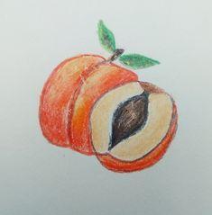 Peach draw fruit drawing