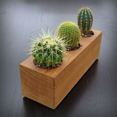 wood planter  Similar with 2x10s and holes the size of tuna cans? diy.