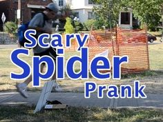 Big Scary Spider Prank