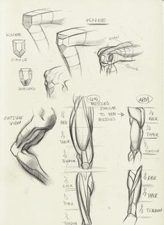http://tulptorials.blogspot.nl/2014/04/anatomy.html ★ || CHARACTER DESIGN REFERENCES | キャラクターデザイン • Find more artworks at https://www.facebook.com/CharacterDesignReferences & http://www.pinterest.com/characterdesigh and learn how to draw: #concept #art #animation #anime #comics || ★