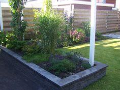 Verhoogde border aan het terras met lavendel en bamboe. Border is voorzien van pergola richting het terras.