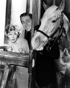 Alan Young co-starred with Connie Hines and Mr Ed (Bamboo Harvester), Mister Ed TV Show from 1961 to 1968