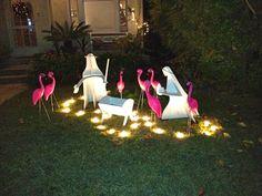 pink flamingo nativity - Google Search