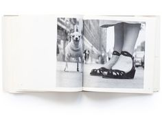 Son of Bitch Book Signed by Elliott Erwitt // Magnum Photos #dogs